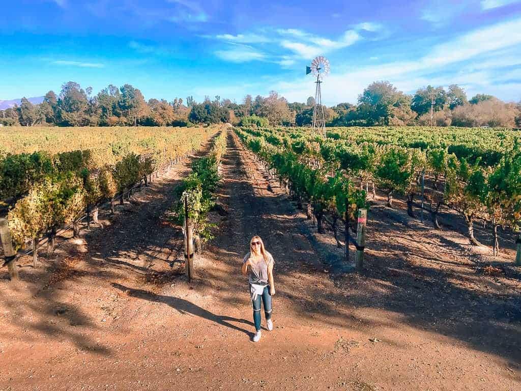 Wine Tasting in Los Olivos