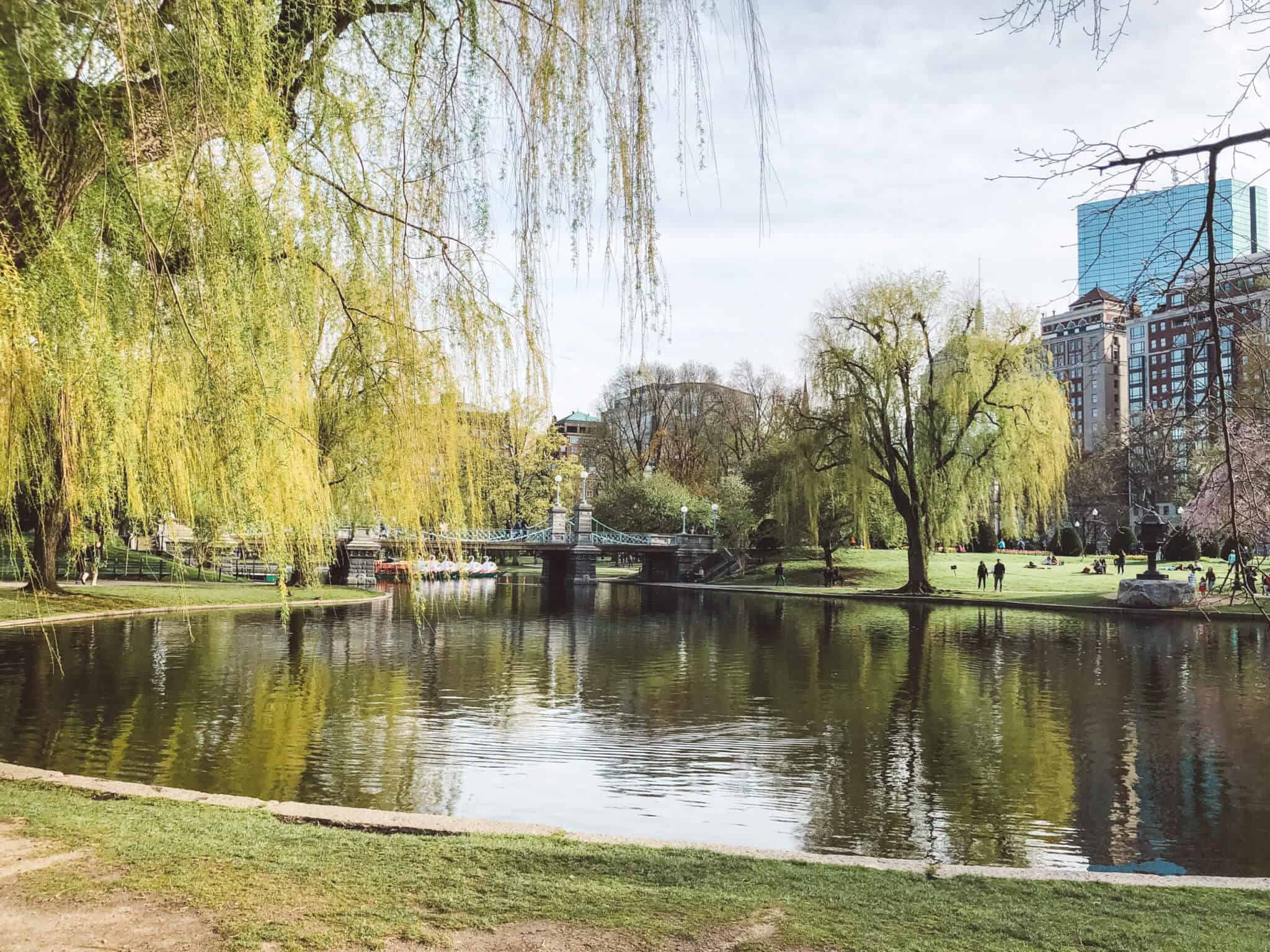 Complete Guide to Boston - Public Garden