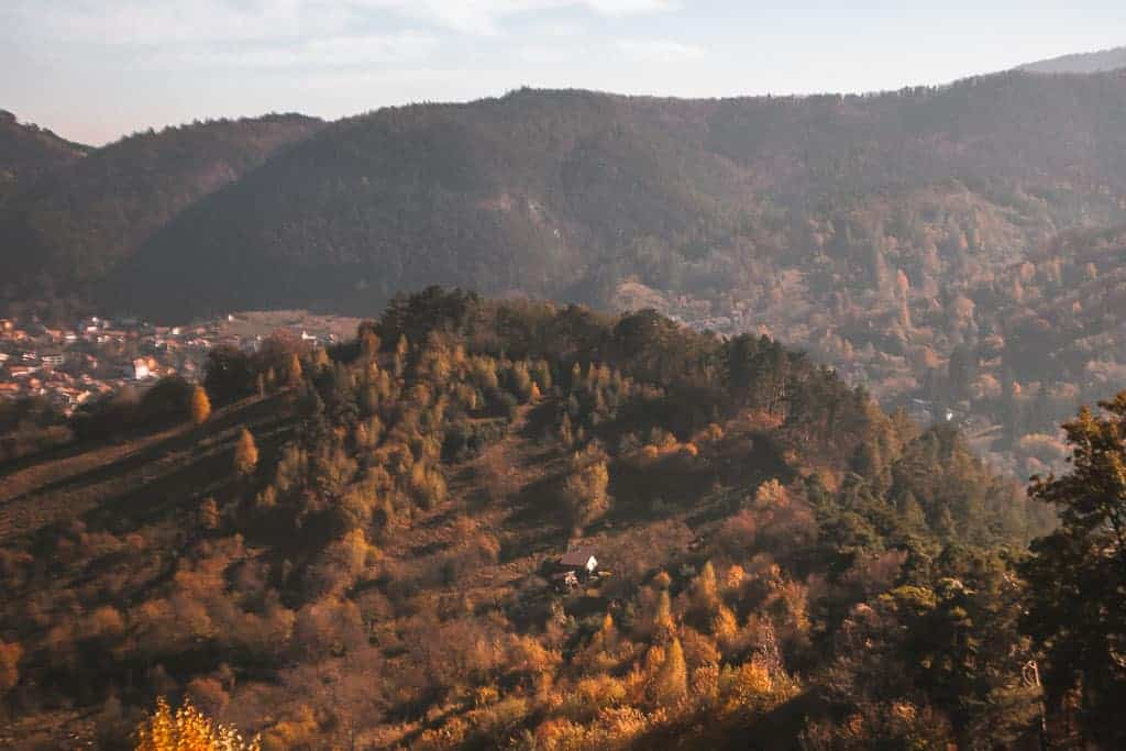 fall in the carpathian mountains with oranges and yellows lighting up the mountains
