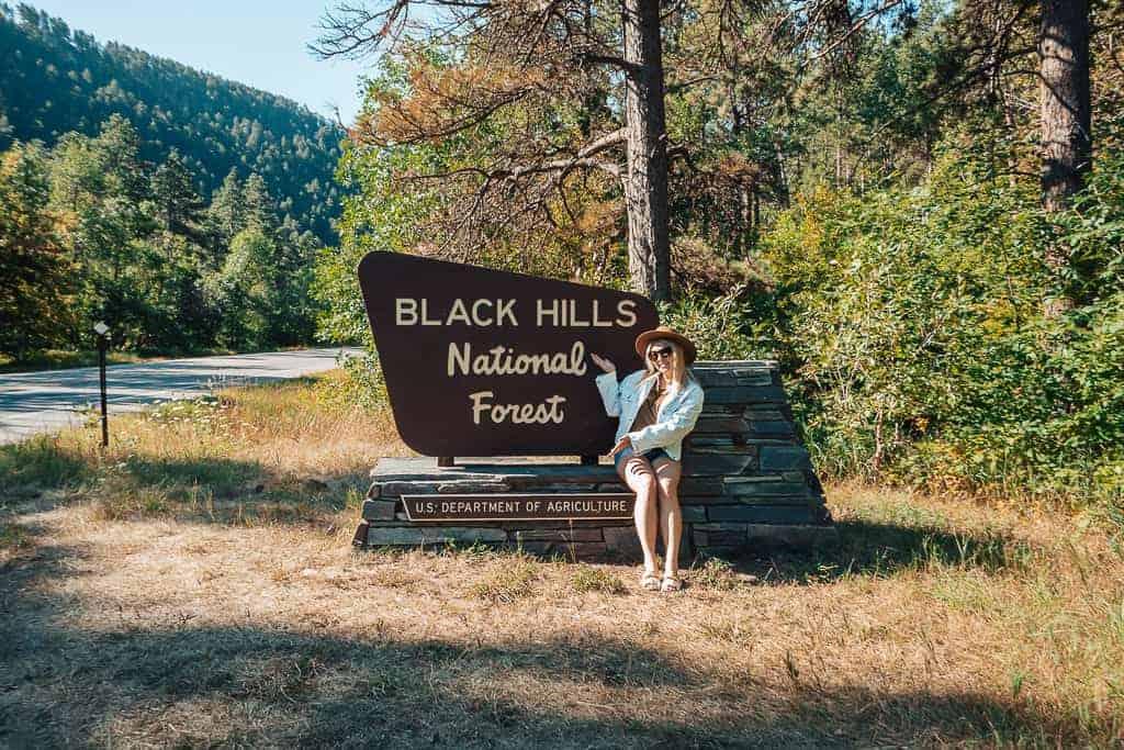 sign: black hills national forest