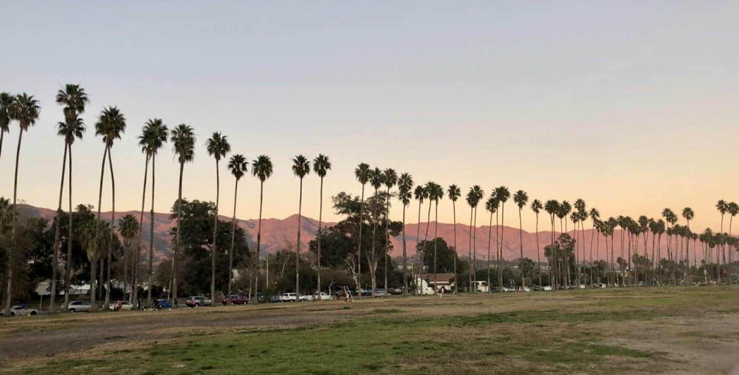 pictures of palm trees and a pink sky as sunsets