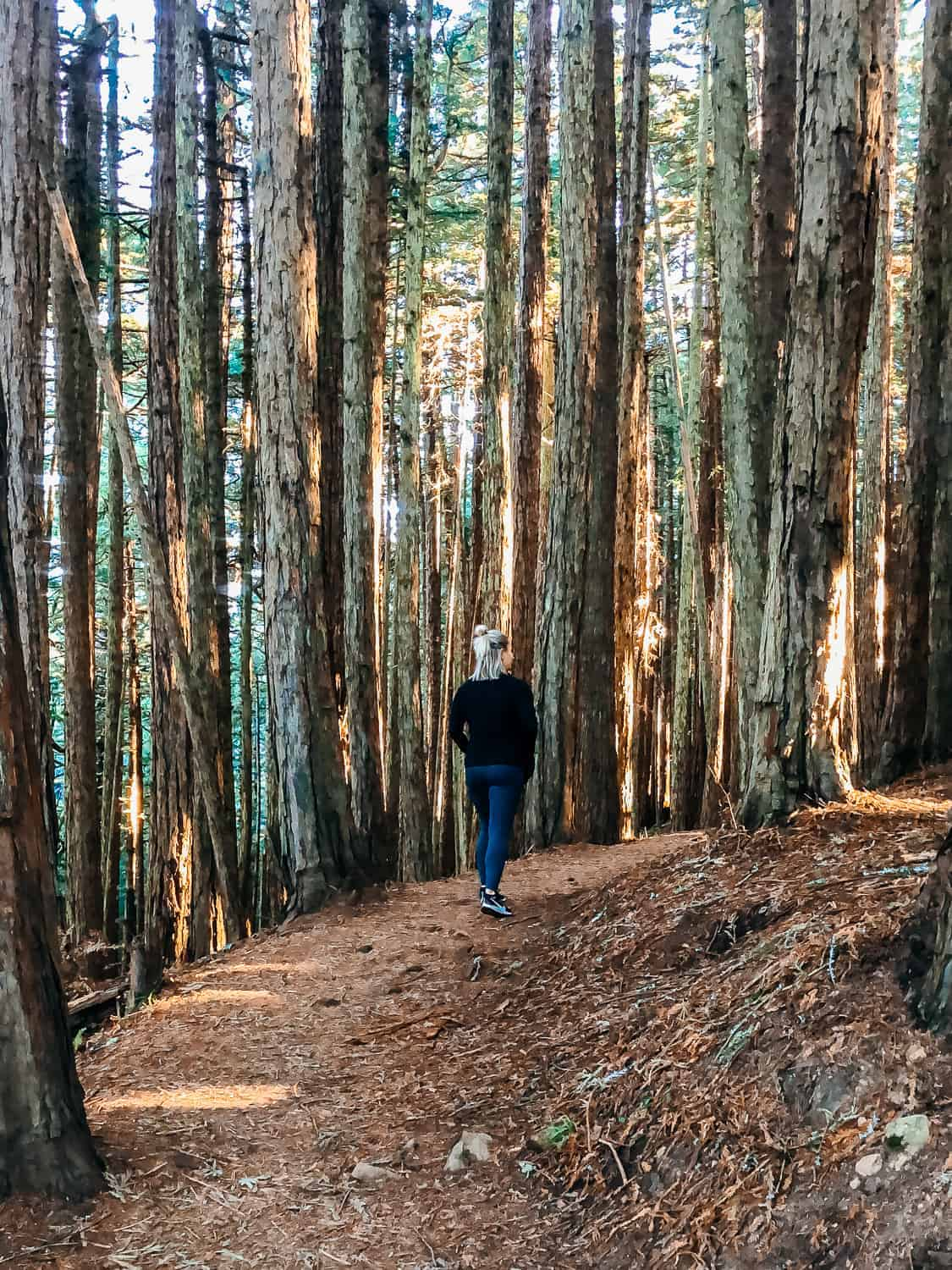girl walking through wooded forest