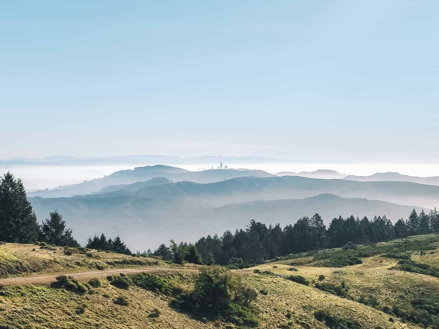 From San Francisco:  Hiking Mt Tamalpais