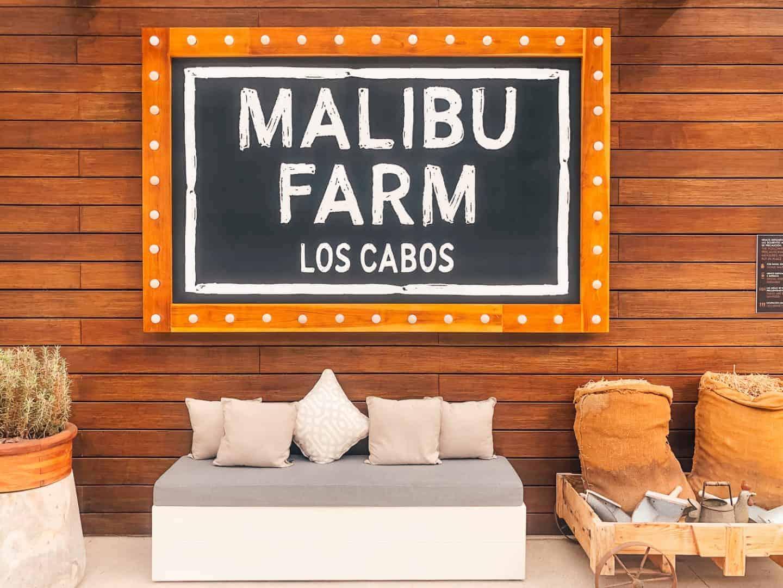 malibu farm restaurant in cabo