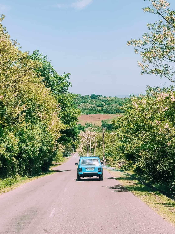 blue car driving amongst green trees