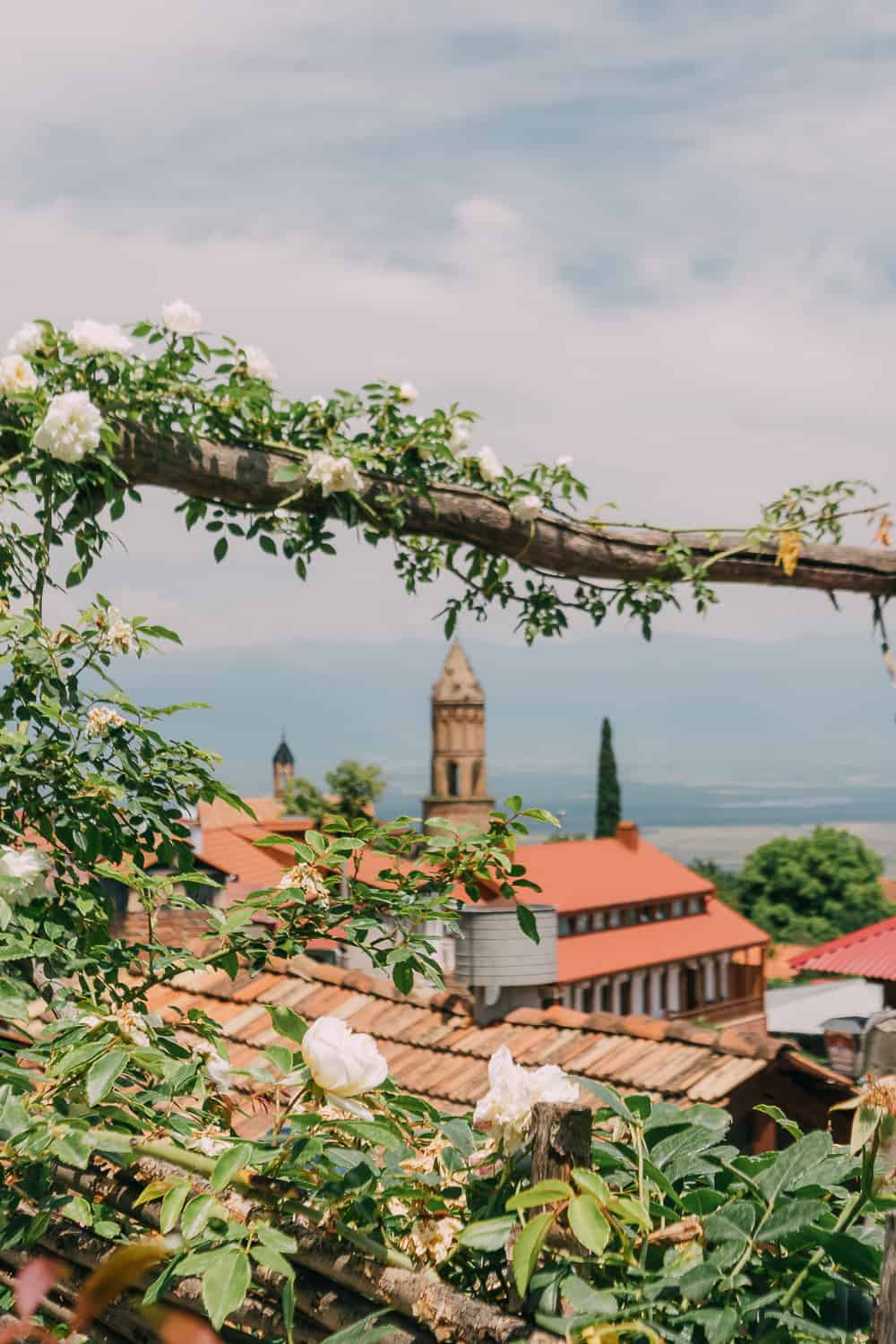 beautiful town with orange rooftops and white flowers